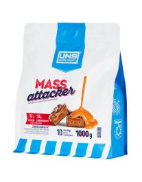MASS ATTACKER (1 kg)